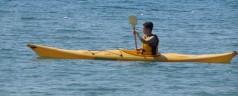 Kayak da mare a Lacona, Isola d'Elba