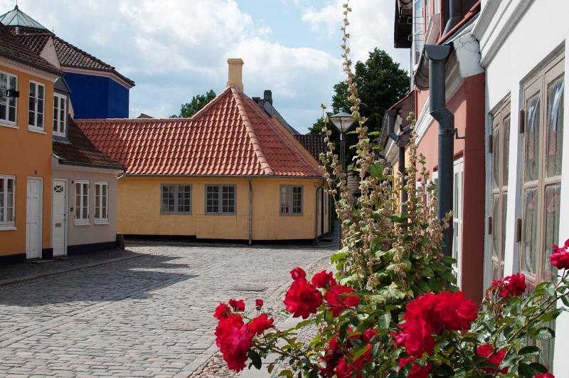 Odense sulle tracce di Andersen