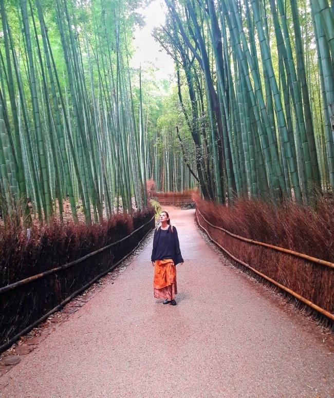 Arashiyama foresta bambù