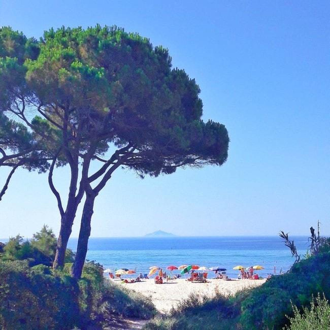 spiaggia seccheto isola elba
