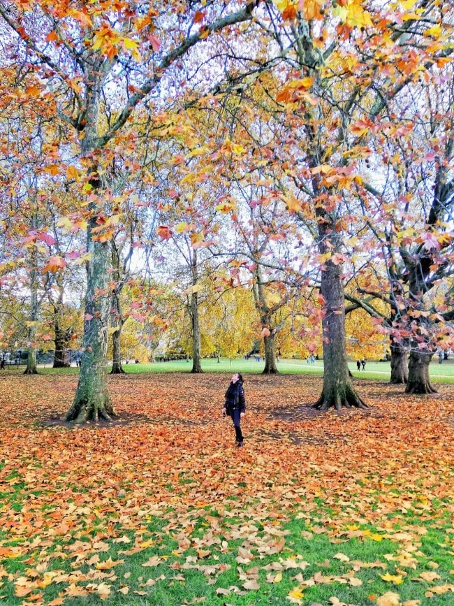 green park londra foliage