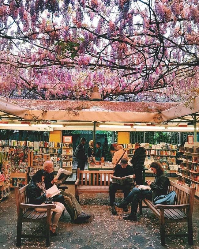 libreria feltrinelli Pisa