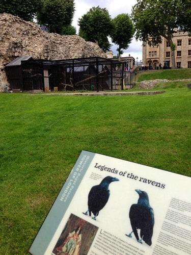 corvi tower of london